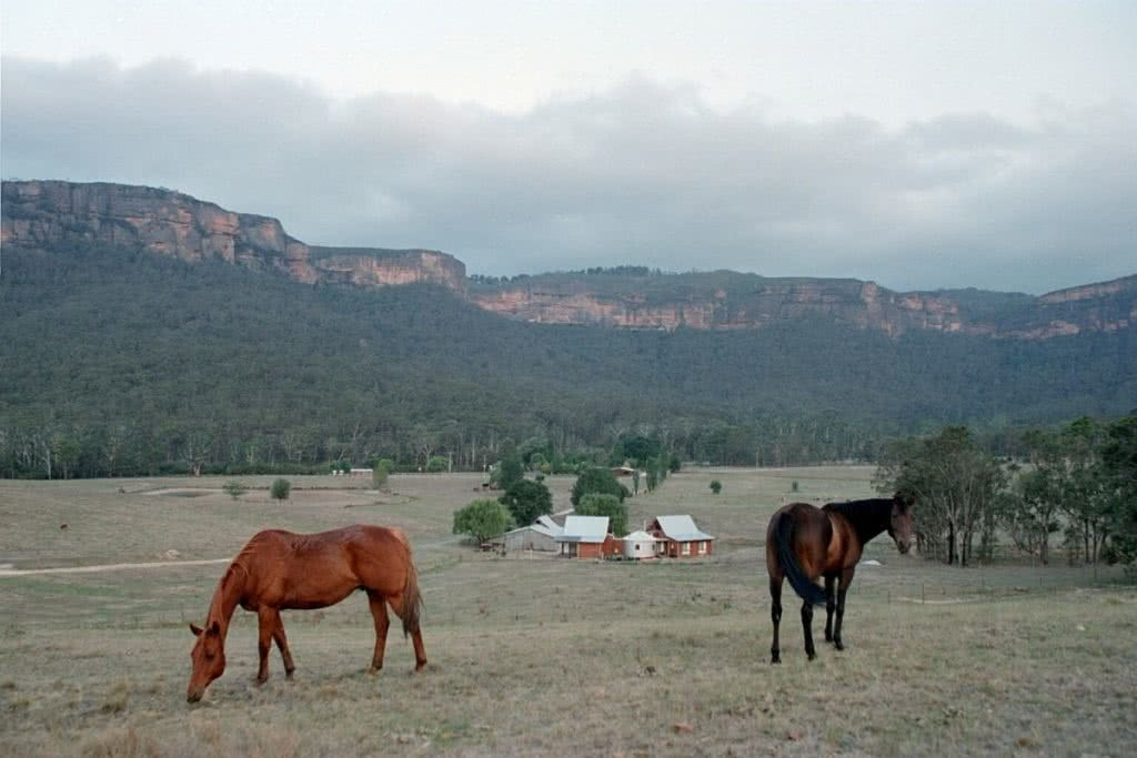 How To Plan the Perfect Cabin Escape In NSW, Henry Brydon, The Woolshed, Blue Mountains, NSW (photo by Astan Croft), horses, hut, house, accommodation, farm