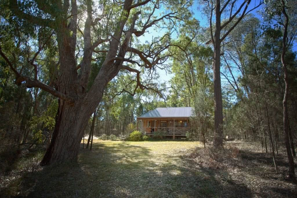 How To Plan the Perfect Cabin Escape In NSW, Henry Brydon, cabin the peak, hut, woods, trees, accommodation