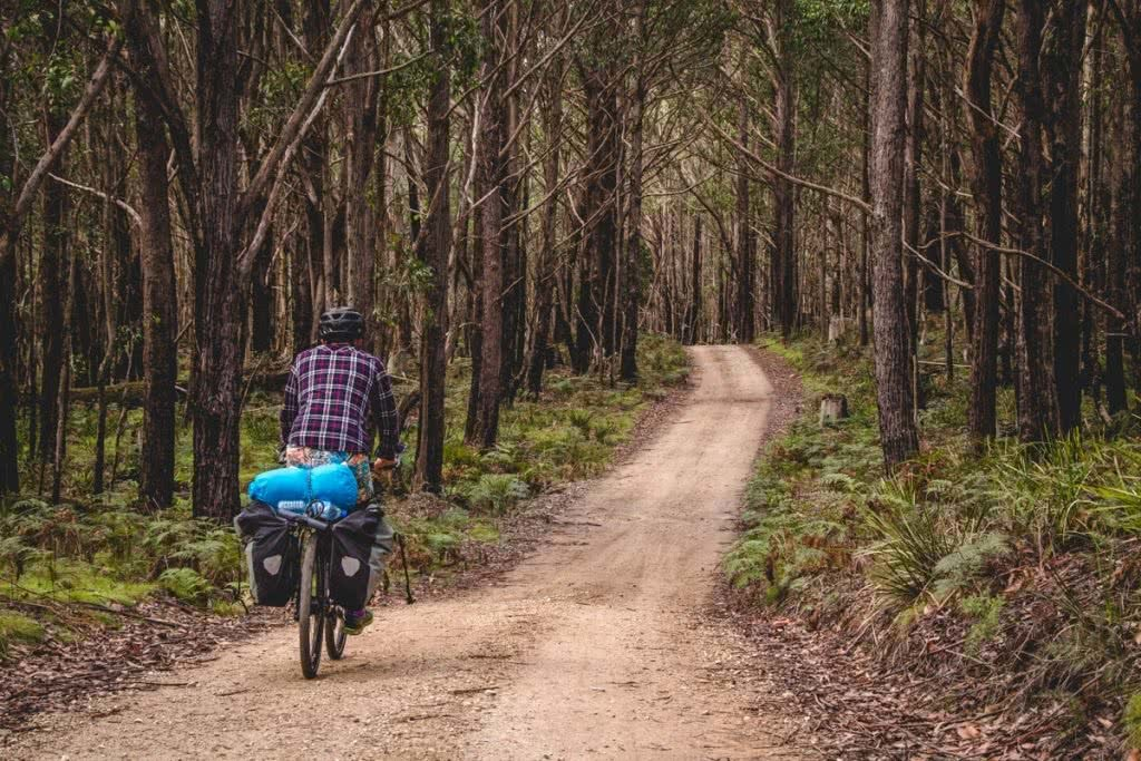 Solo Bicycle Microadventure // Blue Mountains Henry Brydon bike forest