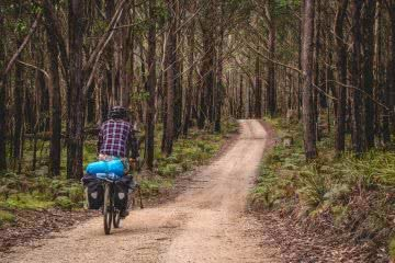 Vaga-biking // 8 Overnight Bicycle Adventures Near Sydney Henry Brydon, bike, camping gear, trail, forest