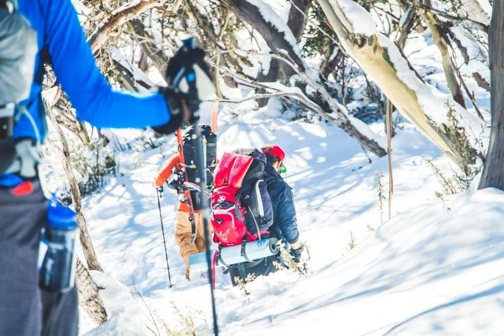 Snowy Mountains Splitboarding (NSW), Henry Brydon, snow, backpack, backcountry, hiking, trees
