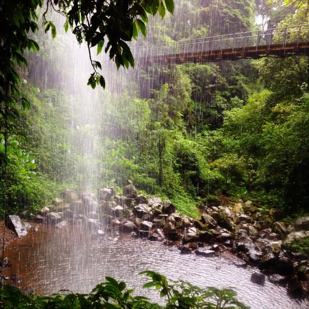 Searching for Alternative Australia // Part 1 Serena Renner, waterfall, creek, bridge, boulders, rainforest, bellingen