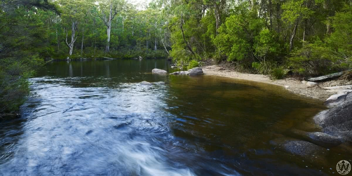 6 Wild Swimming Paradises in NSW Rachel Lewis Andy Lewis Mulligan's Hut, swimming hole, water, trees, waterhole