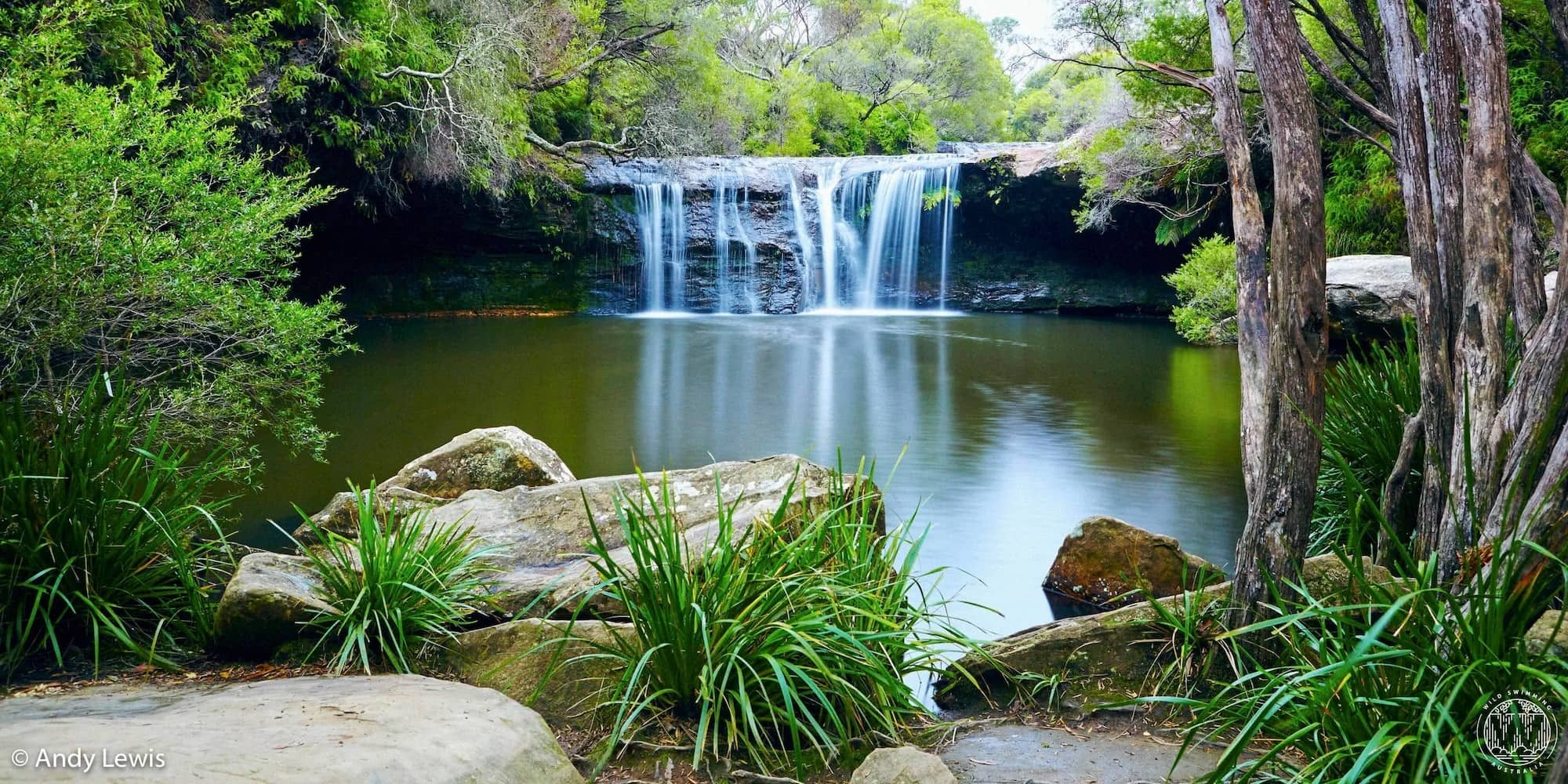 6 Wild Swimming Paradises in NSW Rachel Lewis Andy Lewis Nellie's Glen, swimming hole, water, trees, waterhole, waterfall