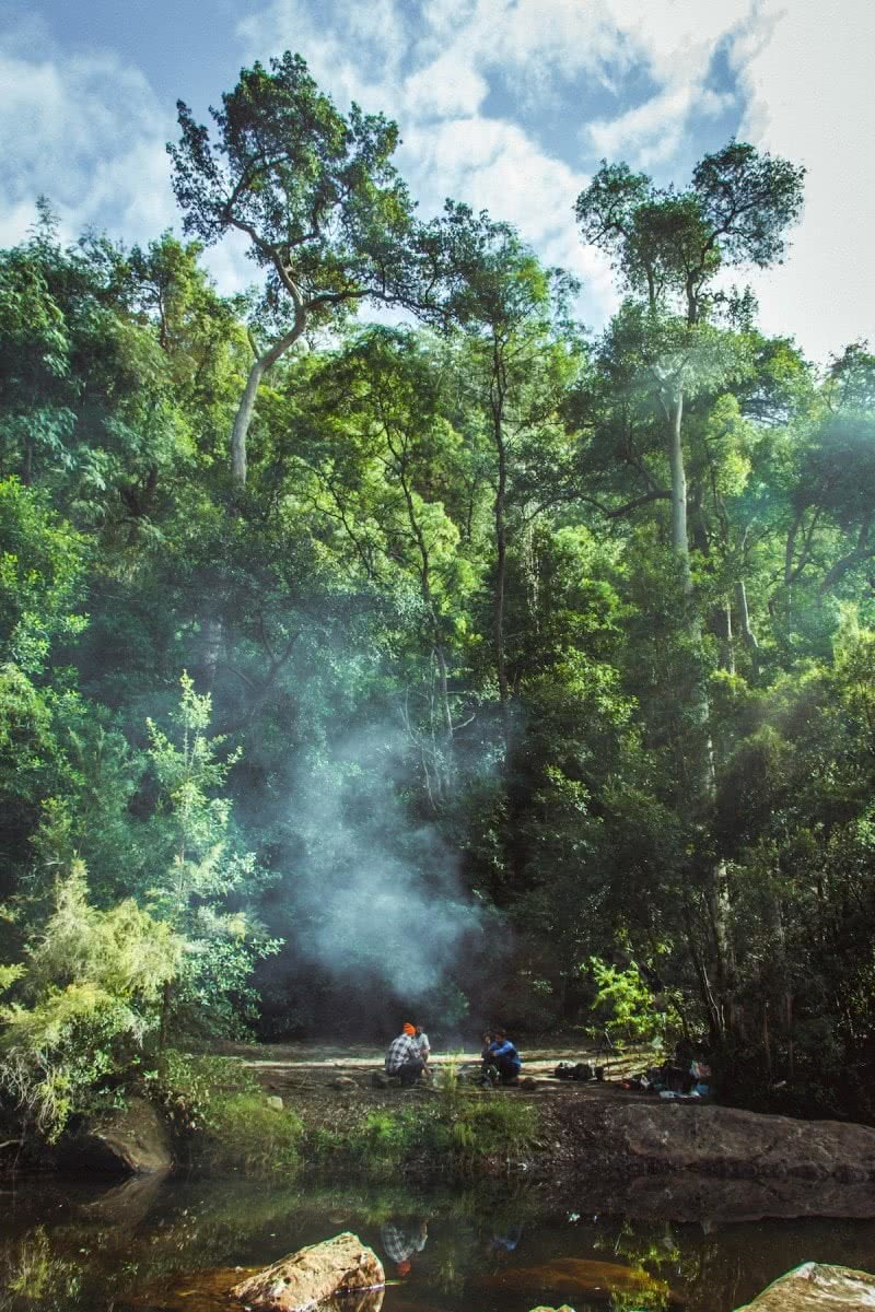 Hike From Glenbrook To Springwood Nsw We Are Explorers