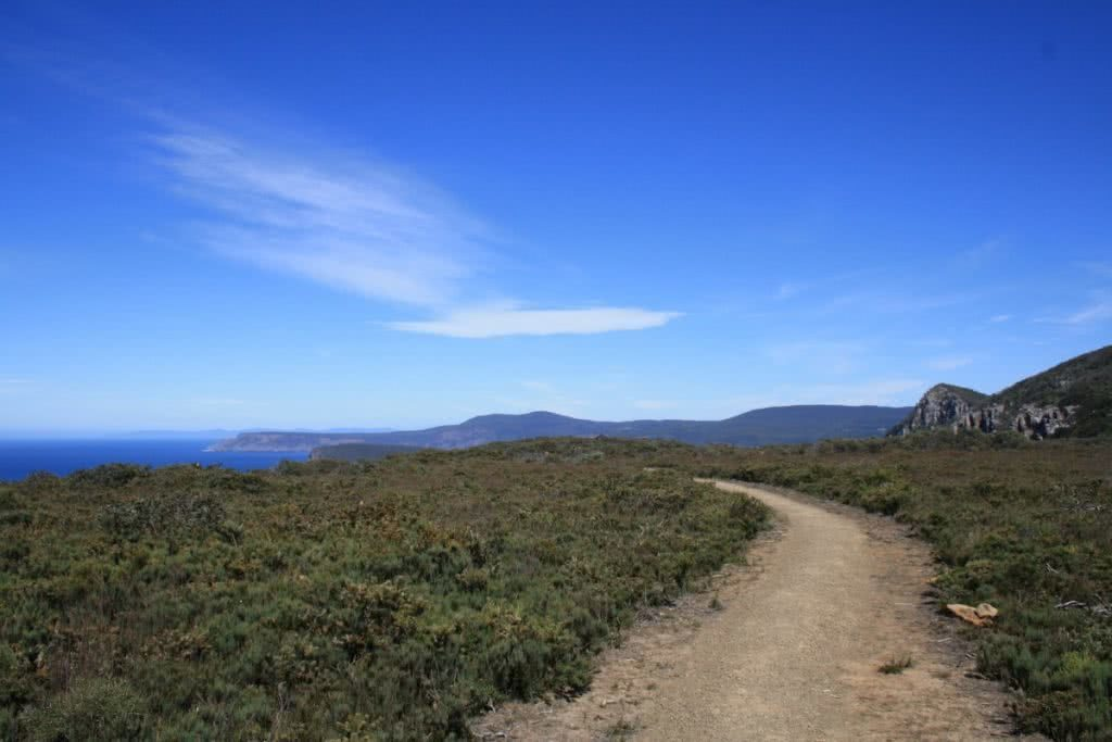 Your First Multi-Day Hike? // Three Capes Track (TAS), Caroline Packer, track, sandy, heath, blue sky, empty