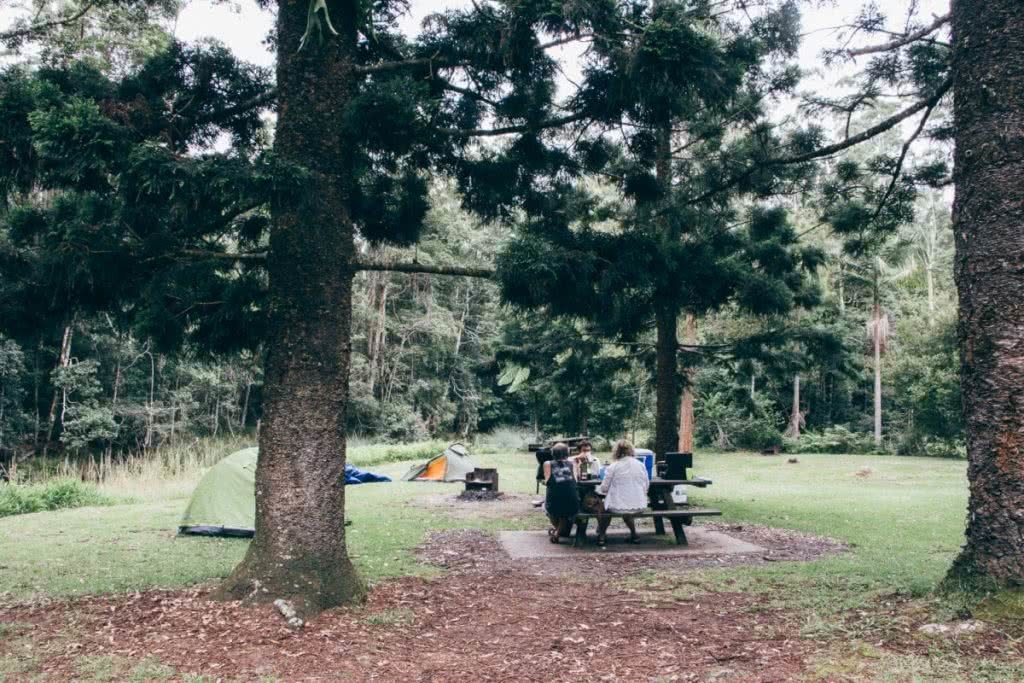 Best Brisbane Escapes South of the City Yasmin Maher, campground, grass, trees, picnic table, friends, Whian Whian state Conservation area