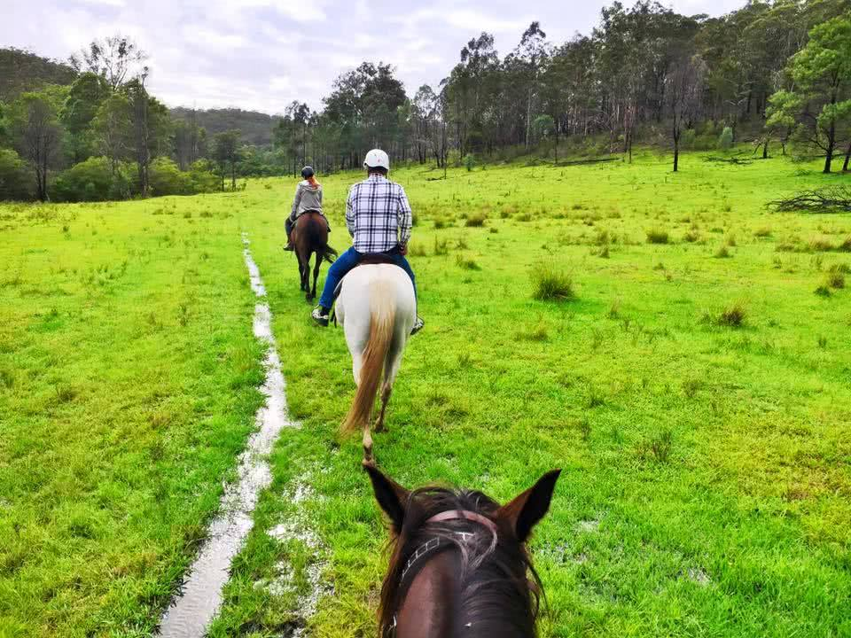 Cowboys and the Hunter Valley (NSW) Angharad Rees horse rider field