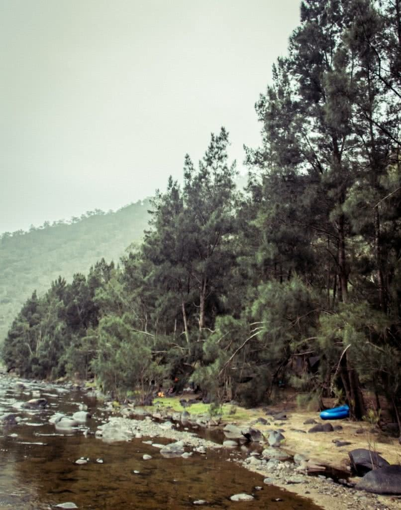 Packrafting The Shoalhaven River // Morton NP (NSW), Henry Brydon, camp, boat, water, shore, pine trees