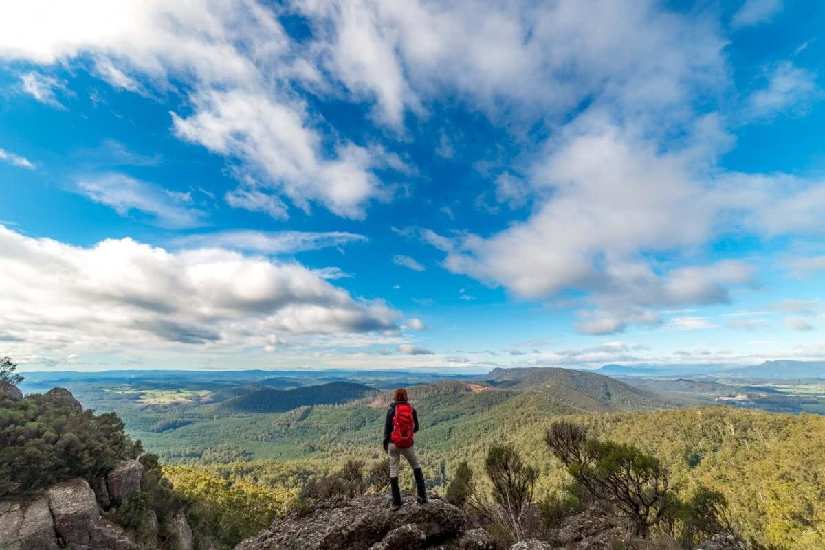 Middle Tier Viewpoint Middle Tier Pano. Isaac Crebert Minnow Falls Tasmania