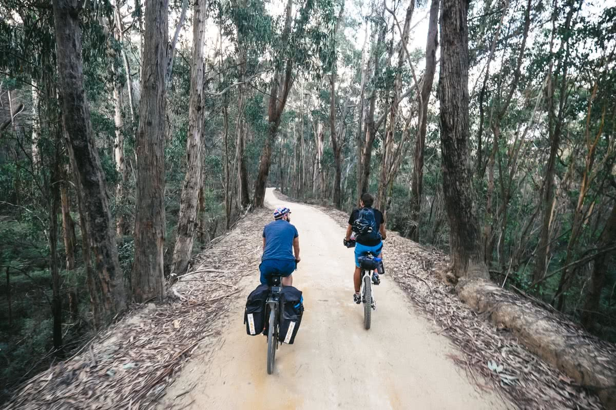 Glow Worm Tunnels Wollemi National Park NSW Reid Granite Review Henry Brydon, bikes, forest, two men, road