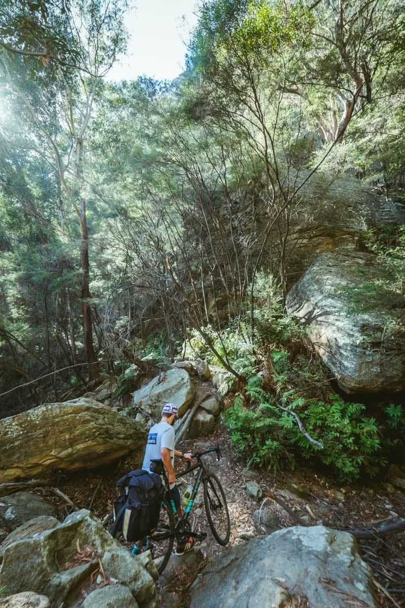 Glow Worm Tunnels Wollemi National Park NSW Reid Granite Review Henry Brydon, bike, man, pushing, bush, forest