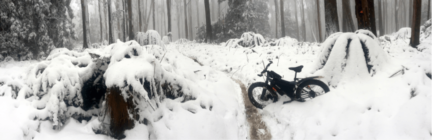 Mt Donna Buang Cycling Microadventure // Yarra Valley (Vic) Euan Pennington fat bike, snow, trail, forest