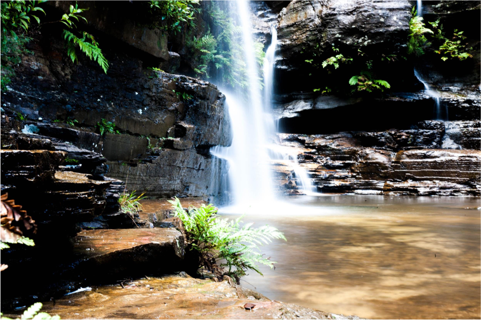 Wentworth Falls Without A Car (NSW), Sam Wilson, long exposure, waterfall, pool, ferns
