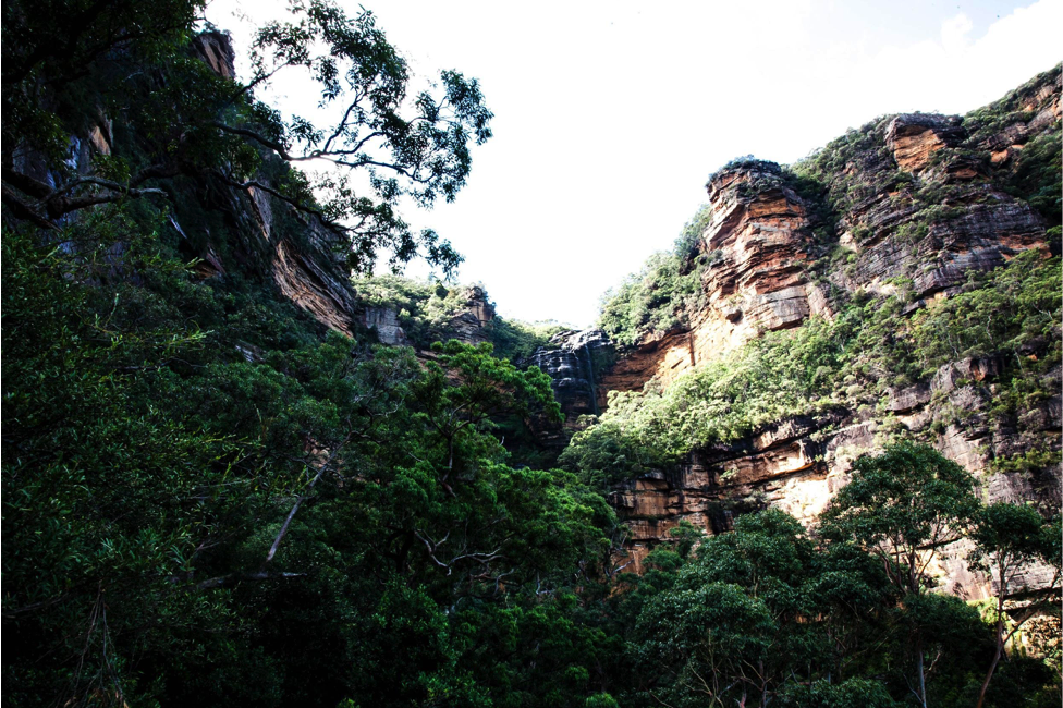 Wentworth Falls Without A Car (NSW),Sam Wilson, rocks, escarpment, valley, green