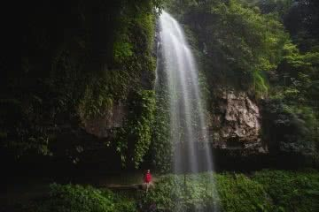 A Wet Monday Morning In Dorrigo National Park (NSW), Liam Hardy, behind a waterfall, cliff, overhang, damp, misty, green