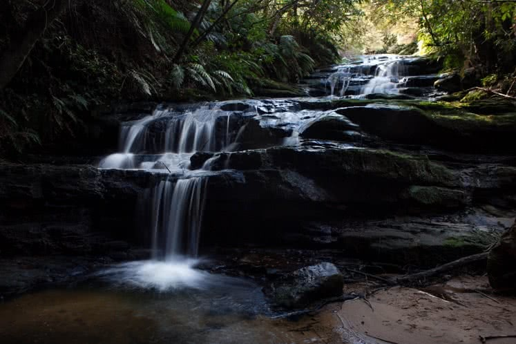 What Goes Down, Must Come Up // Leura Cascades to the Giant's Stairway (NSW), Lachy Firmstone, water, splash, ferns, forest