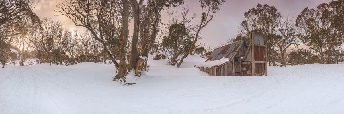 Solo Snowshoeing The High Plains // Falls Creek (VIC), Michael Harris, hut, tree, panoramic, cabin