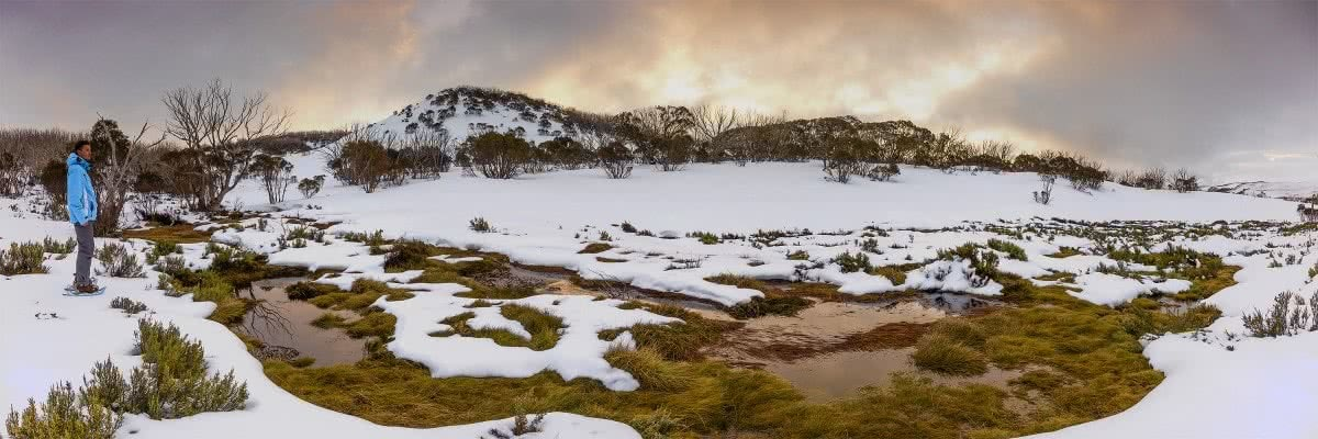 Solo Snowshoeing The High Plains // Falls Creek (VIC), Michael Harris, peak, sunrise, icy, snow, white