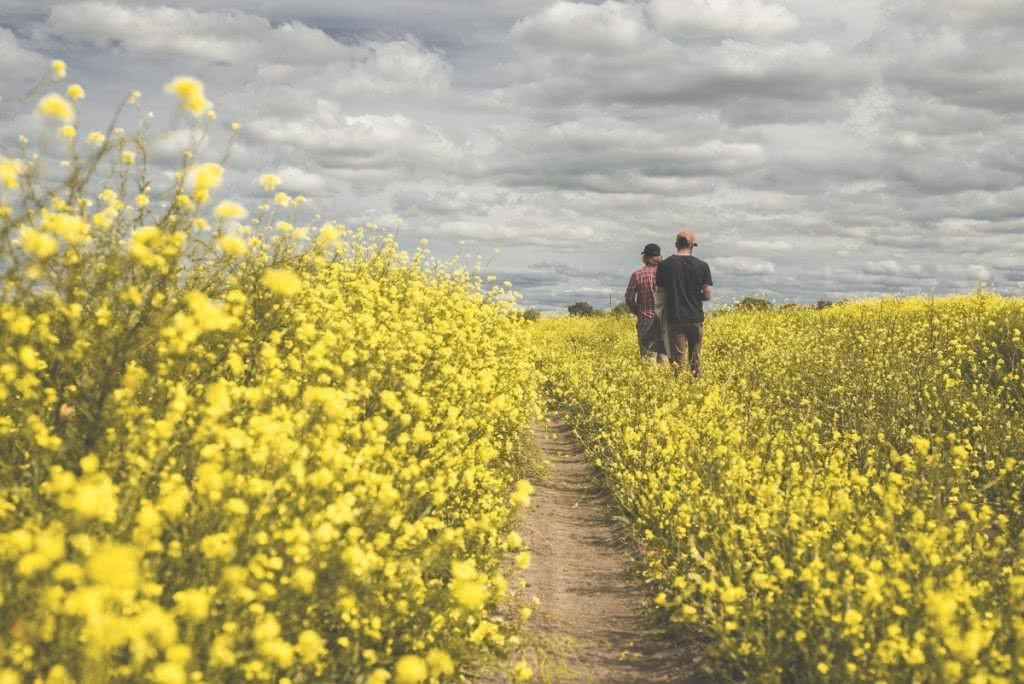 An Epic Outback Weekend Road Trip to Cunnamulla (NSW) Michael Harris canola clouds