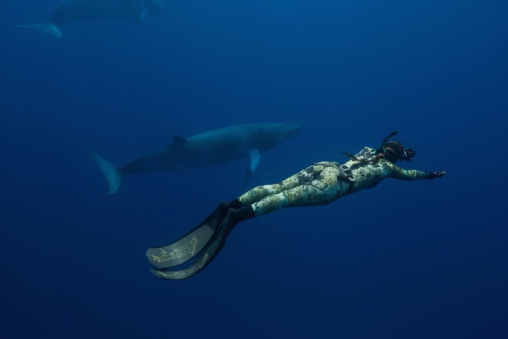 spearfishing jessie cripps