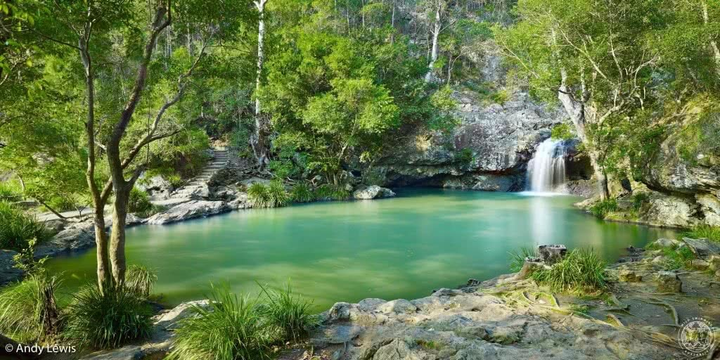 10 brisbane wild swimming adventures qld rachel lewis andy lewis kondalilla falls, waterfall, trees, swimming hole, waterhole