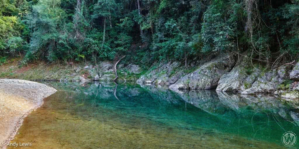 10 wild swimming adventures near brisbane qld rachel lewis andy lewis booloumba creek, creek, pool, trees, swimming hole, waterhole, turquoise water