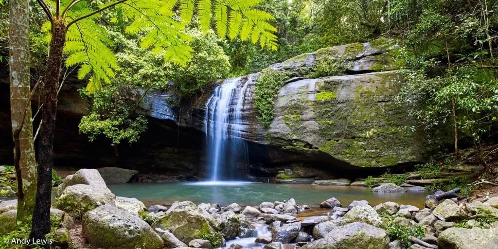 10 wild swimming adventures near brisbane qld rachel lewis andy lewis serenity falls, waterfall, swimming hole, rocks, ferns