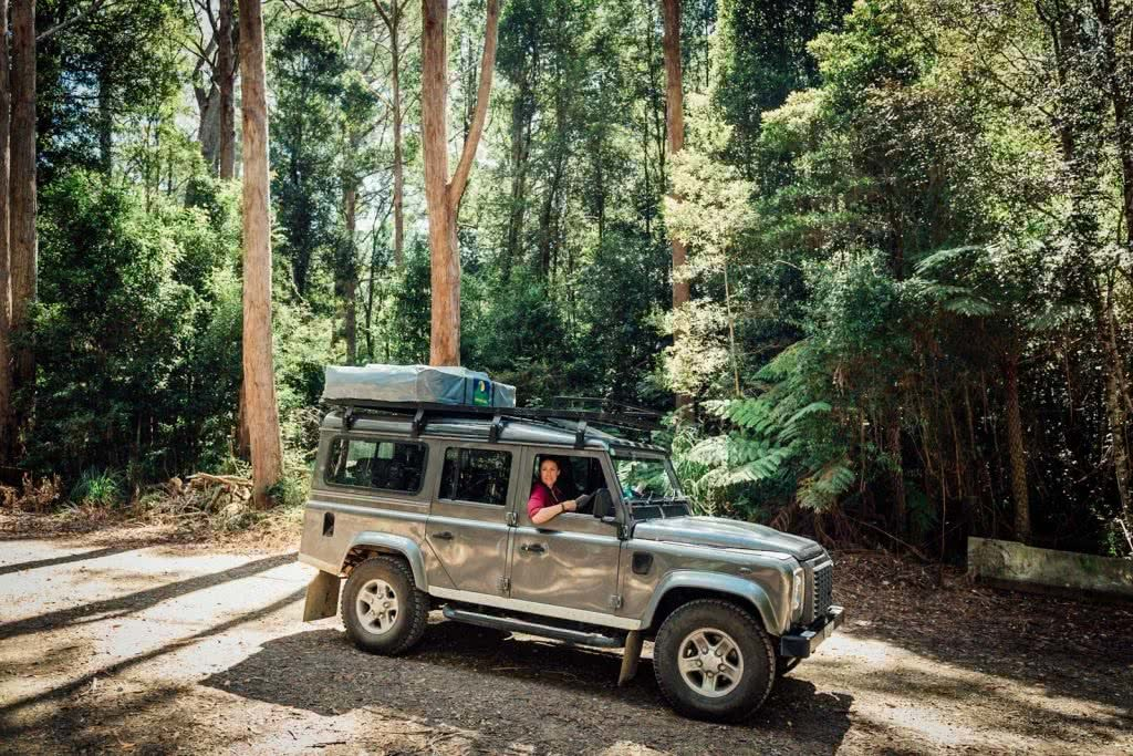 Off-Road Adventures in Oxley Wild Rivers National Park (NSW) Kate Miles 4wd forest dirt road