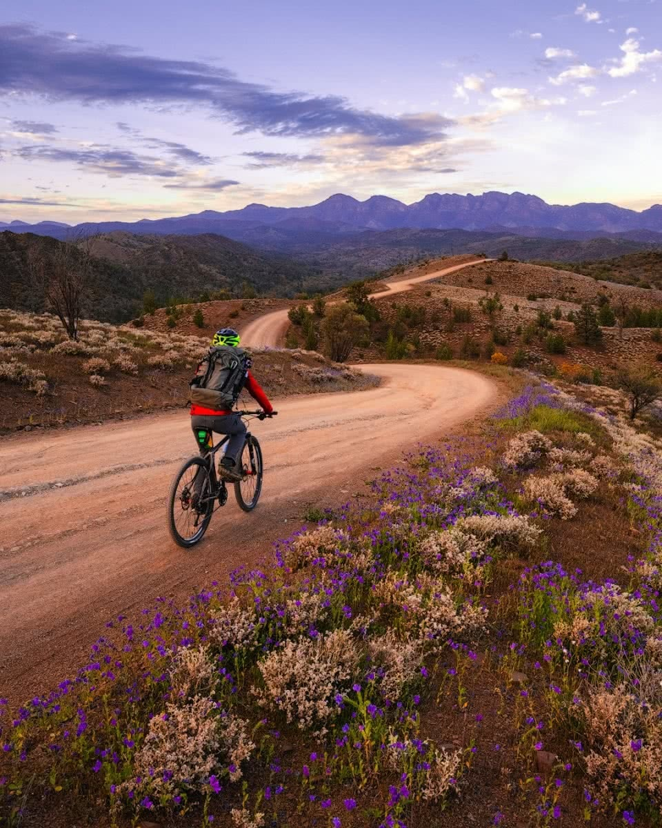 Brian Hatchard flinders ranges hero south australia sa riding bunyeroo cycling bikepacking
