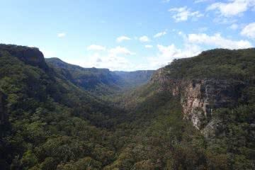 Mt Dawson From The Wolgan Valley (NSW) Melissa Hamblin Biggs, valley, sky, cliffs, forest