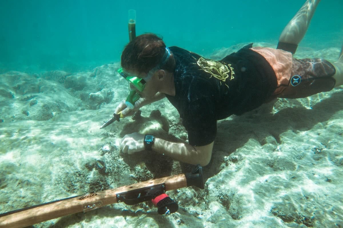 Scout Hinchliffe Keswick Island whitsundays qld castaways kayaking snorkeling spearfishing