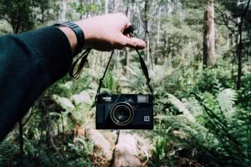 day in the dandenong ranges, Nathan Giles, camera forest