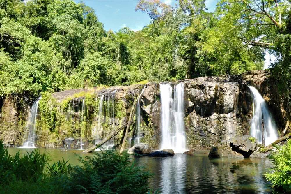 Wooroonooran National Park, T. Shane waterfall