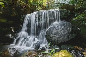Leura_waterfalls_blue_mountains_D.Quaranta