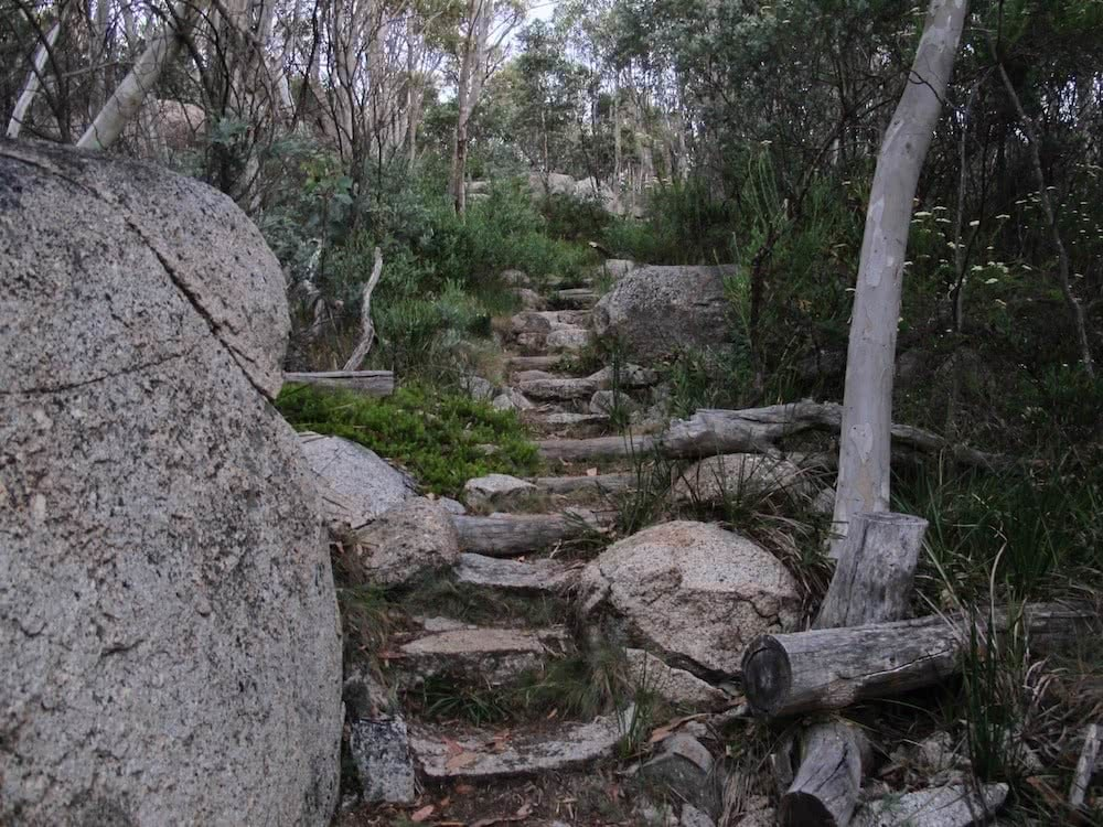 Square Rock // Namadgi National Park (ACT), Shea-Cara Hammond, stone steps, boulder, trees, going up