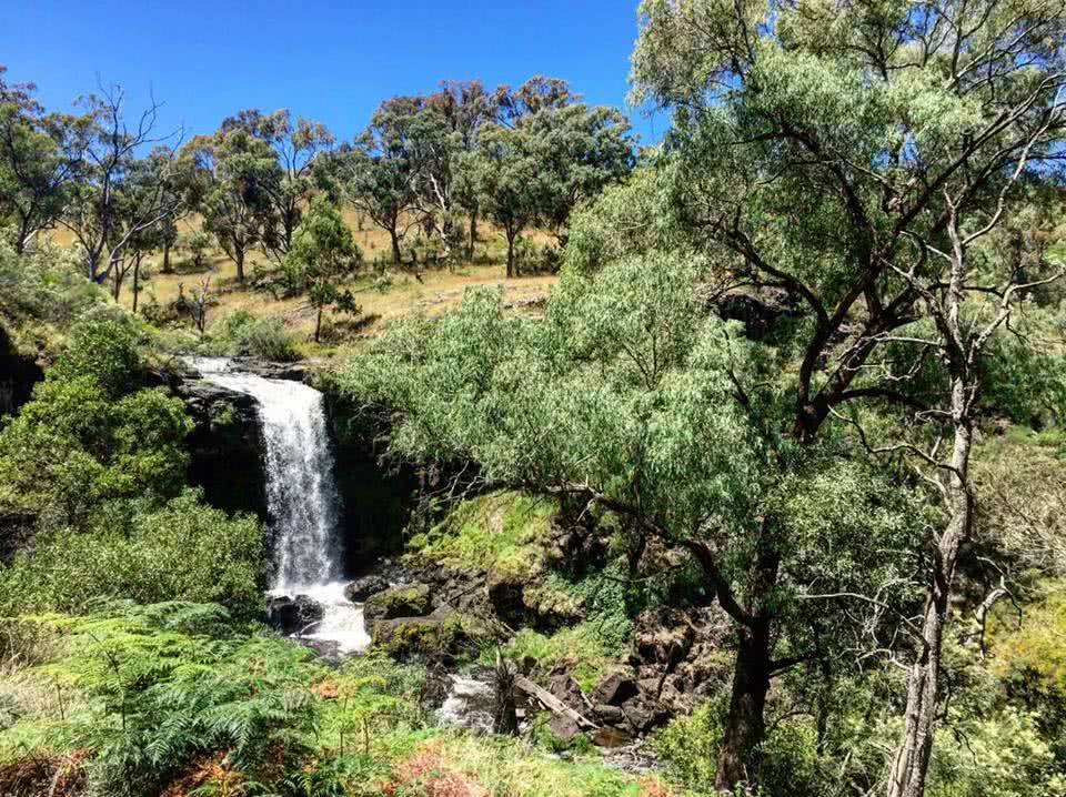 Snowy Mountain's Best Kept Secret // Paddys River Falls (NSW) Tiffany Hulm waterfall bush