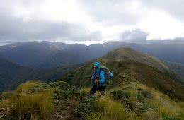 Ridgeline walking in the Tararua Ranges LAURA WATERS new zealand