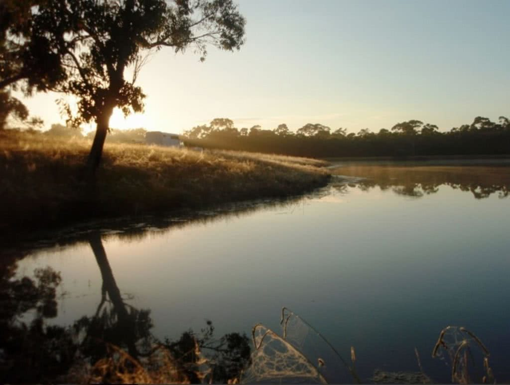 5 Epic Campsites in Victoria (You Didn't know Existed) Henry Brydon youcamp victoria horse heaven