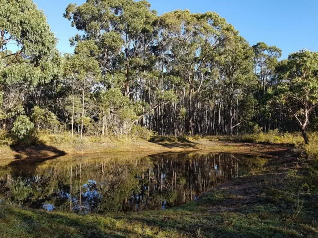 5 Epic Campsites in Victoria (You Didn't know Existed) Henry Brydon youcamp victoria chillcrest
