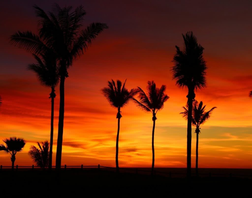 The Pearl of the North West // Broome (WA), Zoe Vaughan, sunset, palm trees, red sky, clouds, silhouettes