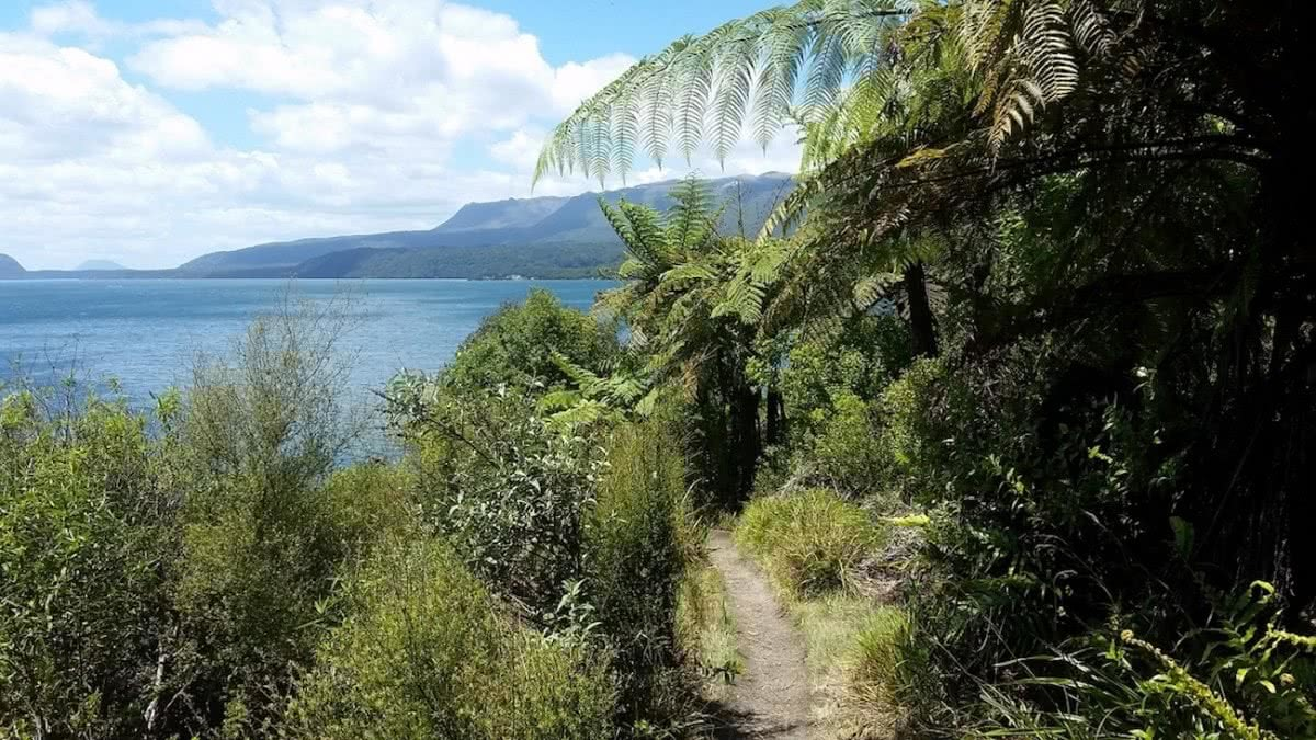 Tarawera Trail brooke nolan new zealand nz lake trail