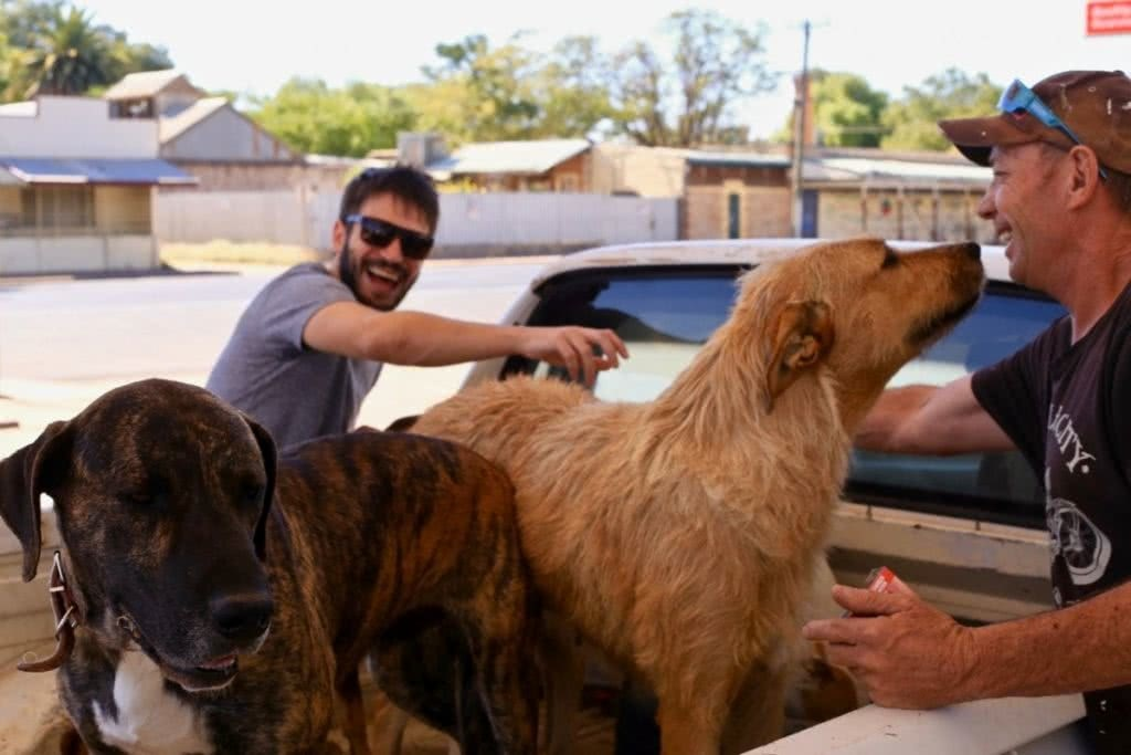 Outback and Back, Ross Clayton, NSW, dog, ute, road trip