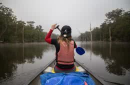 Canoeing Lake Yarrunga, Kangaroo Valley, NSW, canoe, paddling, point of view, gumtree graveyard