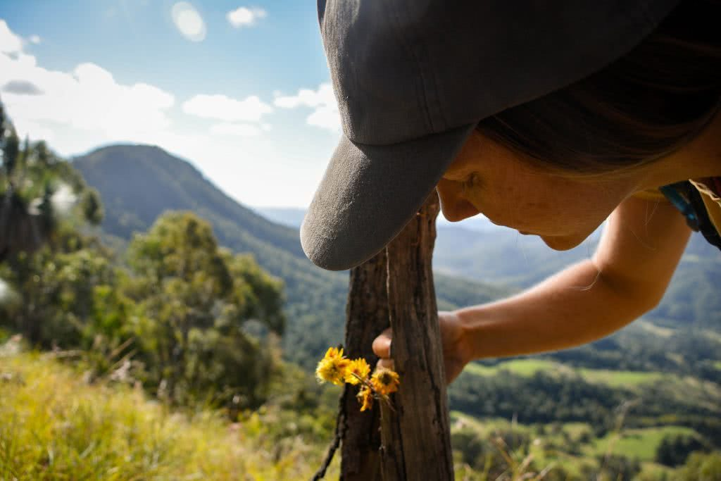 Lisa Owen Neglected Mountain Scenic Rim QLD Scout Hinchliffe flower mountain