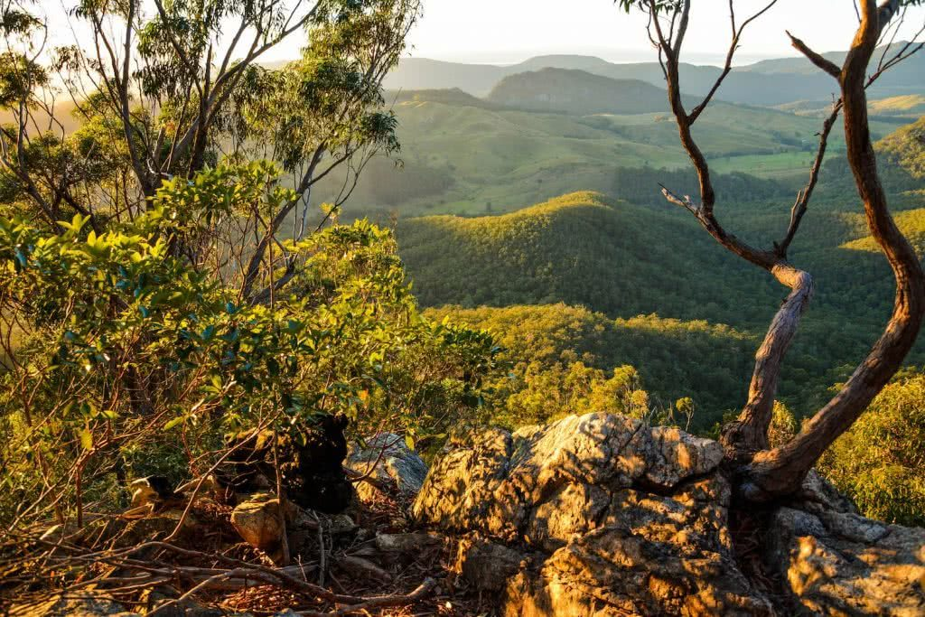 Lisa Owen Mount Barney South Ridge Scenic Rim Queensland QLD mountain First Light Viewpoint