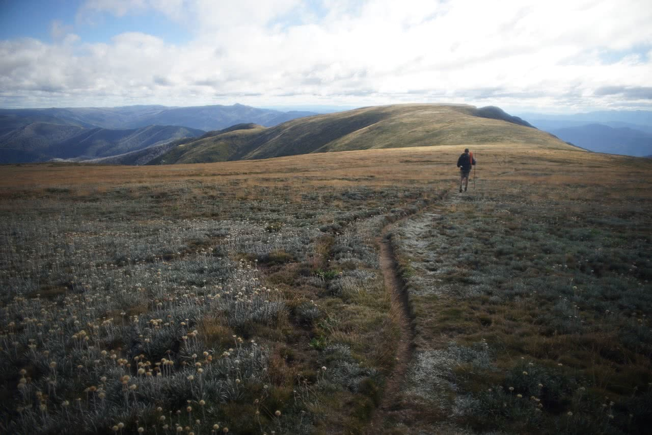 Lachie Thomas Australian Alps walk track Bogong multi-day hikes victoria