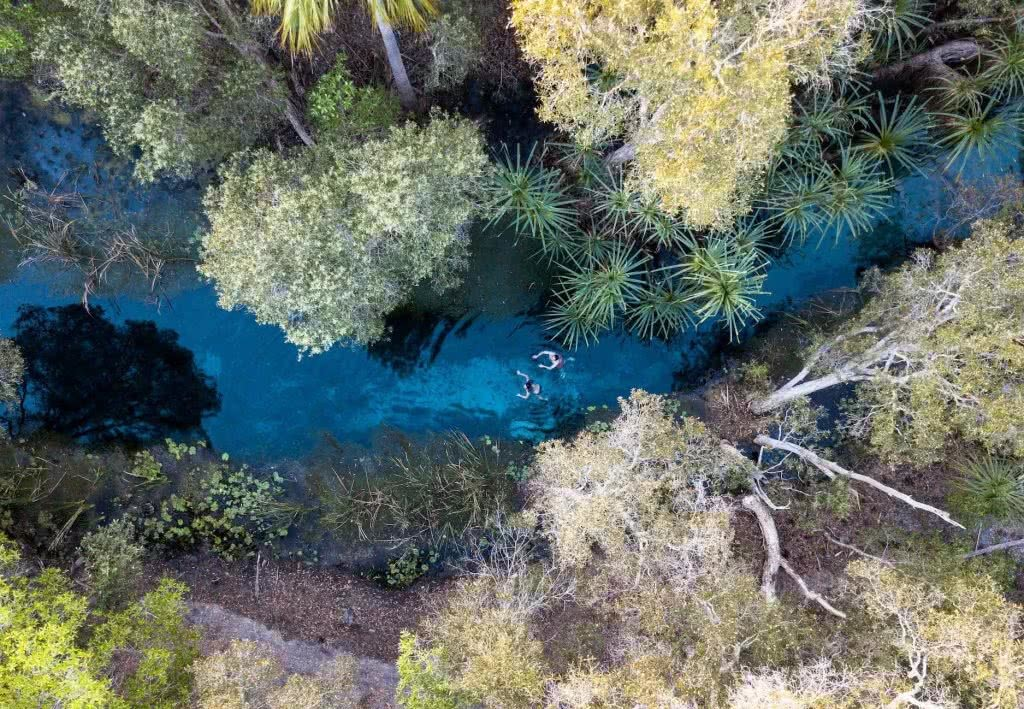 A Tropical Desert Oasis // Bitter Springs (NT) Pat Corden Bitter Springs Northern Territory NT drone shot photography palm grove