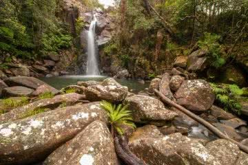 Finding Ethel Creek Falls // Paluma Range National Park (QLD) Tom Shane Ethel Creek Falls Queensland QLD