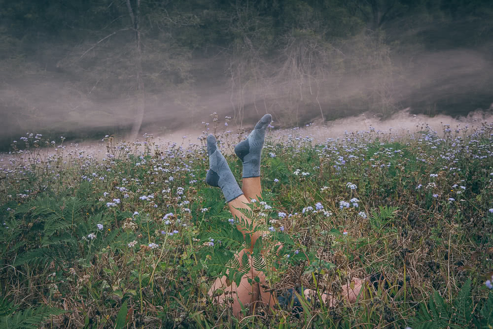 Yasmin Maher, Le Bent Socks, flower, field